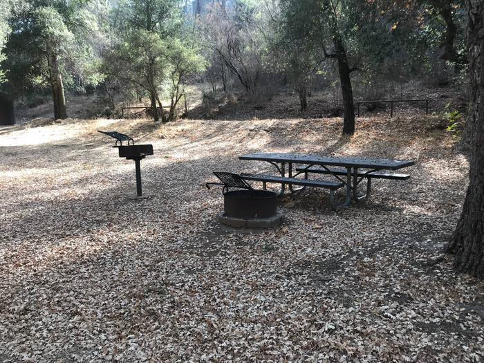 Nira Campground Site 4