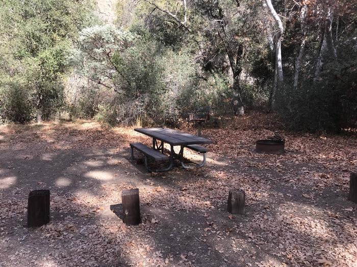 Nira Campground Site 6