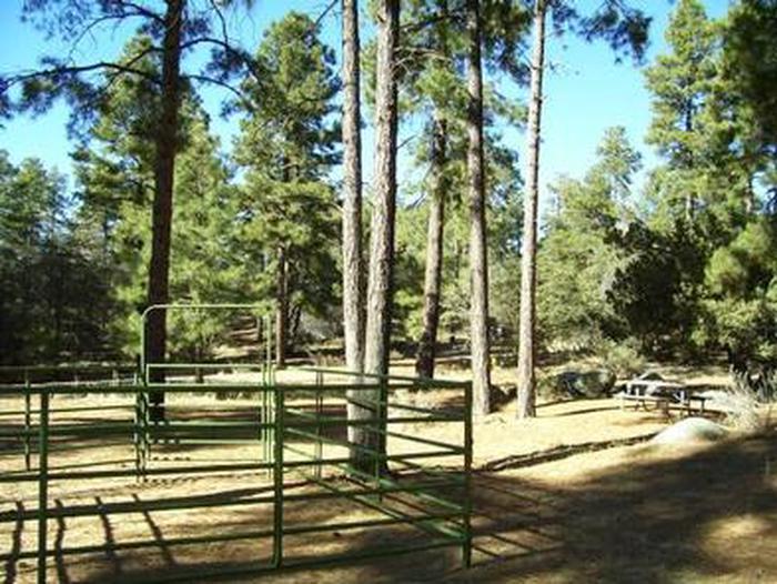 GROOM CREEK HORSE CAMP corral and picnic tableGroom Creek corrals