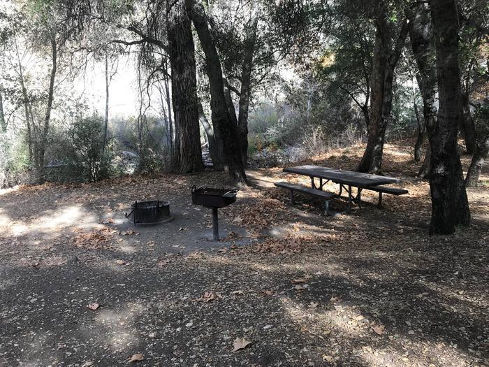 Nira Campground Site 8