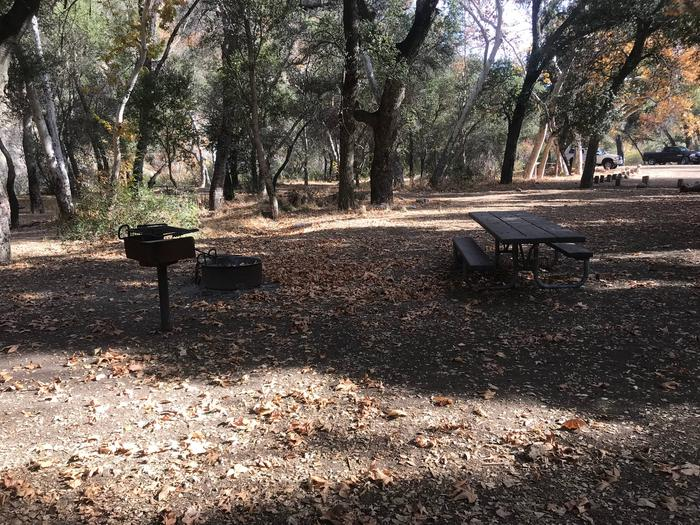 Nira Campground Site 9