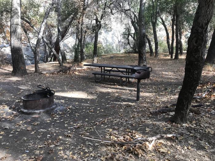 Nira Campground Site 10