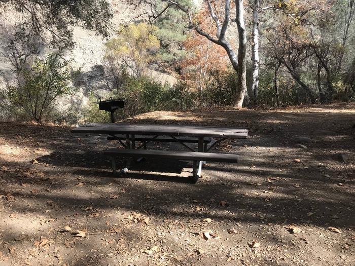 Nira Campground Site 11