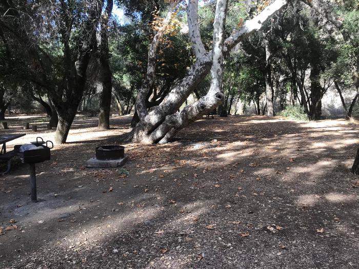 Nira Campground Site 12
