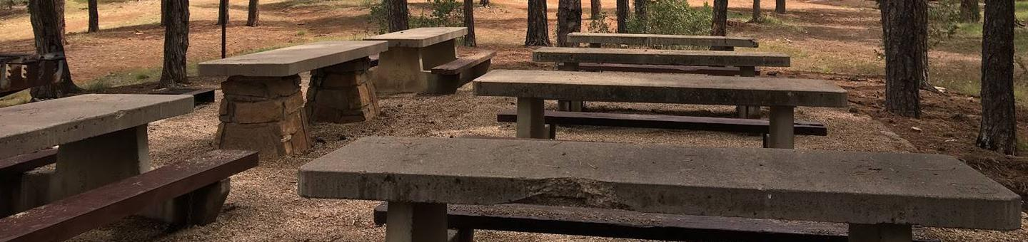 this is a picture of picnic tables from a reservable Pine Flat siteExample of a reservable picnic site at Pine Flat