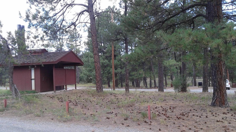 Pine Flat site
