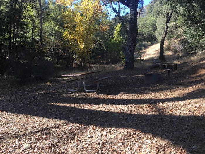 Ponderosa Campground Site 8