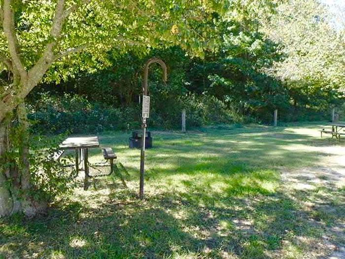 Steel Creek Horse Camp Site #33