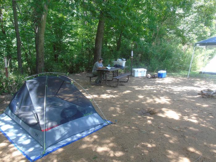 Steel Creek Camp Site #12