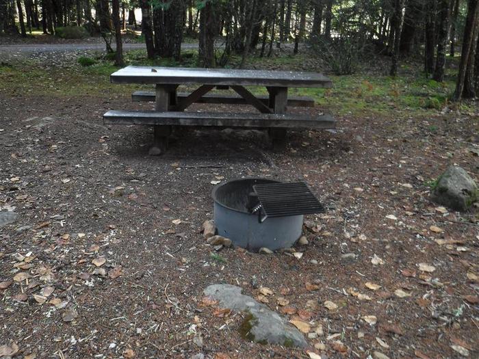 Toketee Lake Campground B 06
