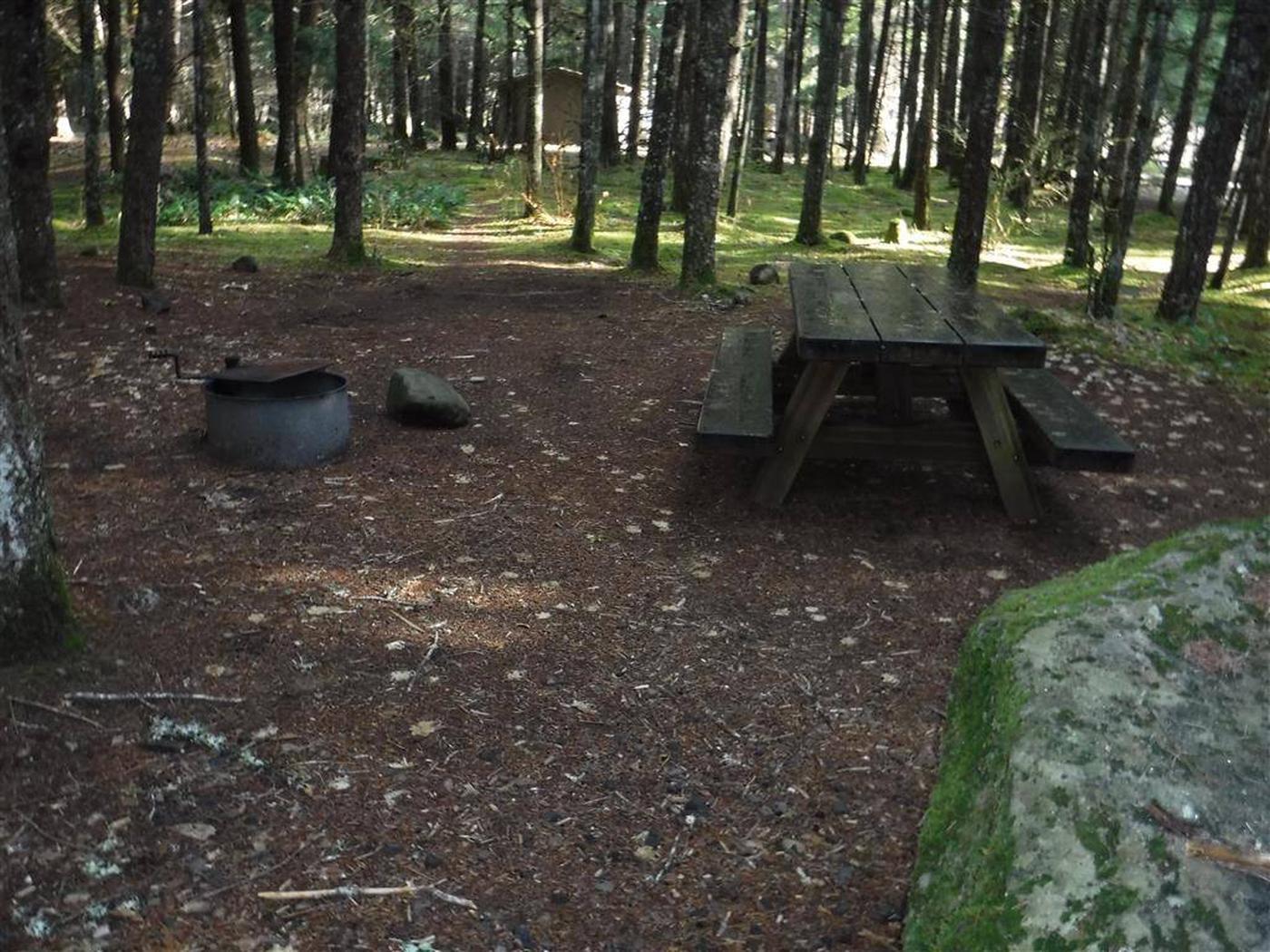 Toketee Lake Campground B 08