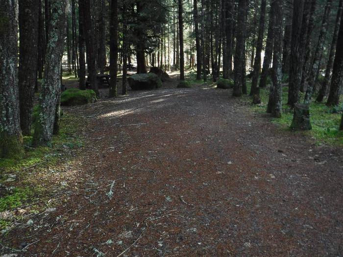 Toketee Lake Campground B 07