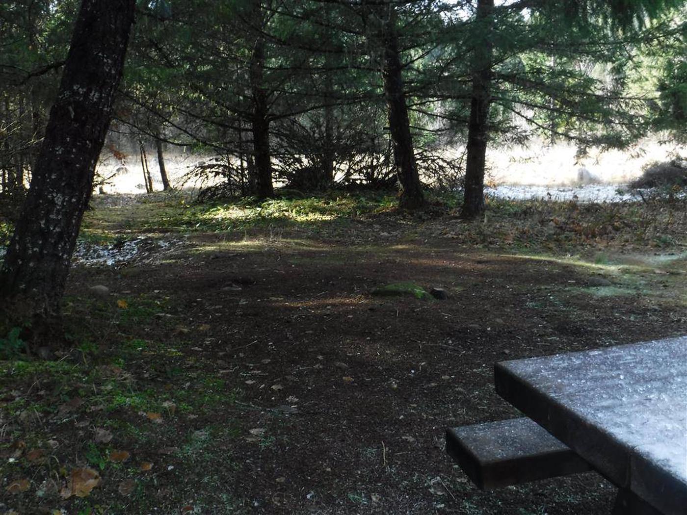 Toketee Lake Campground B 11
