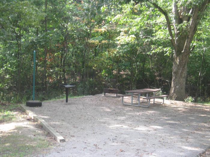 Site 43c