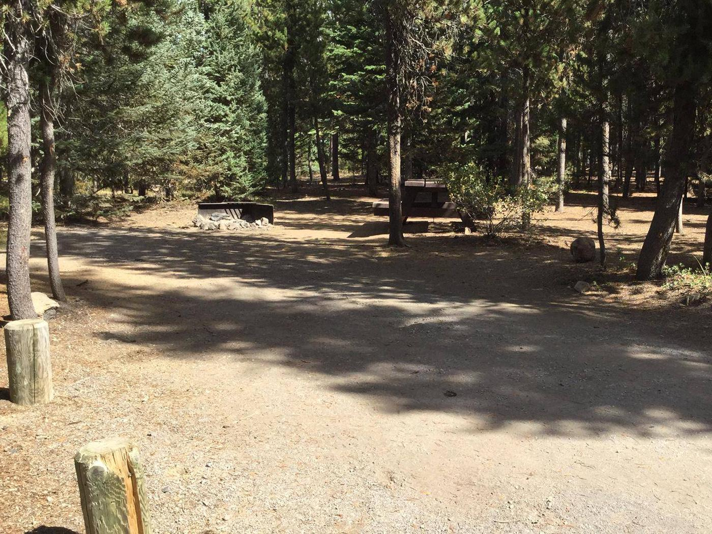 Little Fawn Group CampSite 4