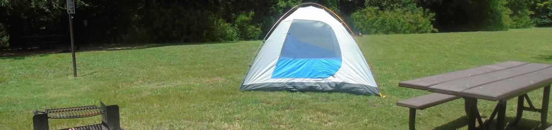 Steel Creek Camp Site #13
