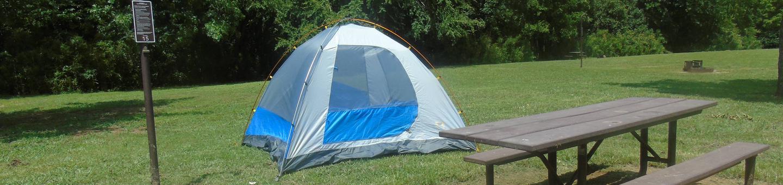 Steel Creek Camp Site #15