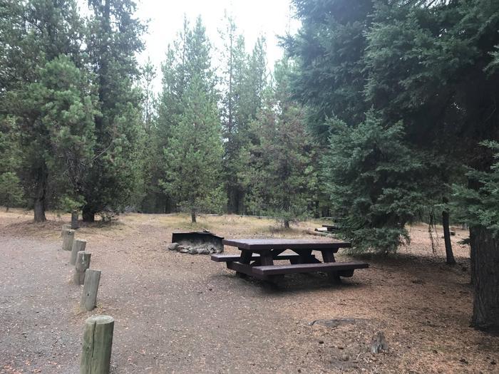 Little Lava Lake CampgroundSite 1