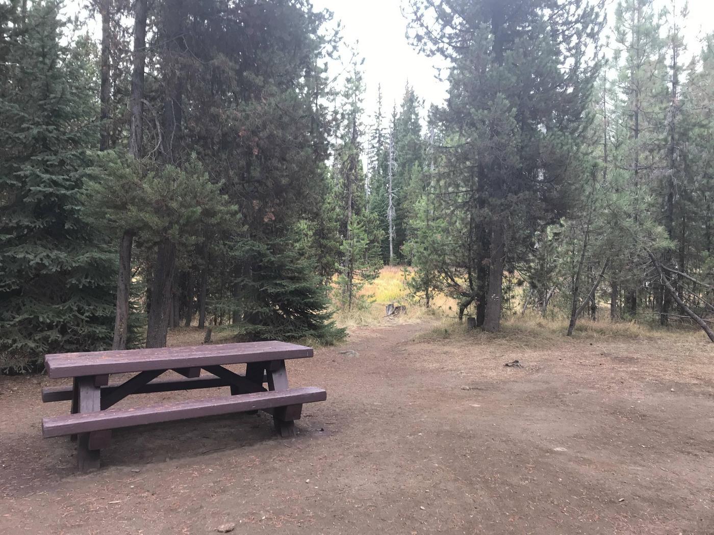 Little Lava Lake CampgroundSite 9