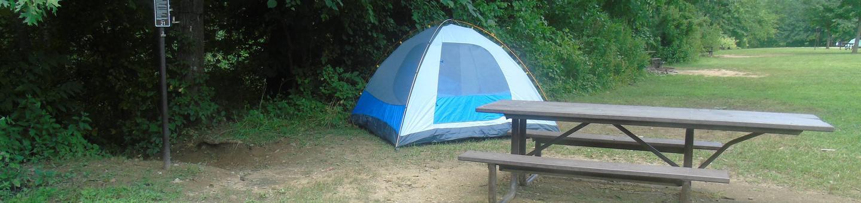 Steel Creek Camp Site #21