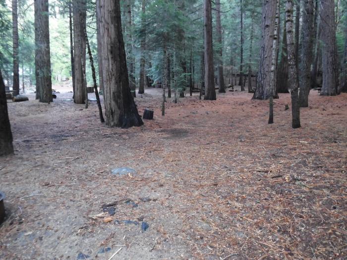 Tent Pad Site 45Site 45