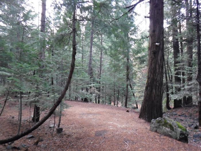 Tent Pad Site 46 Site 46