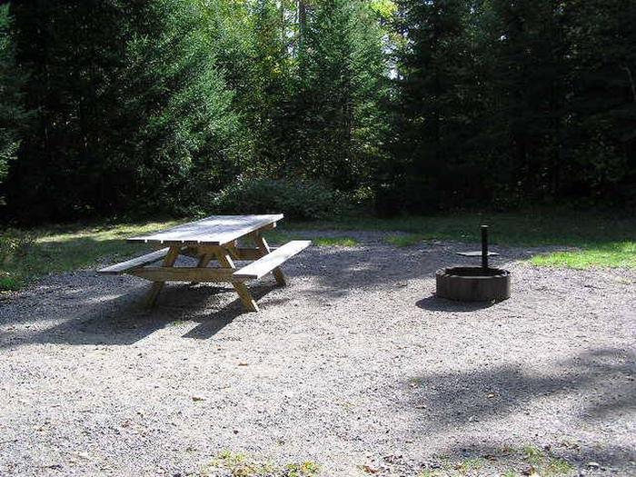 Site 49