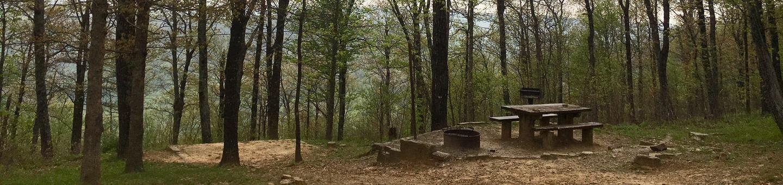 White Rock Mountain, Site 6White Rock Mountain Campsite 6 in Spring