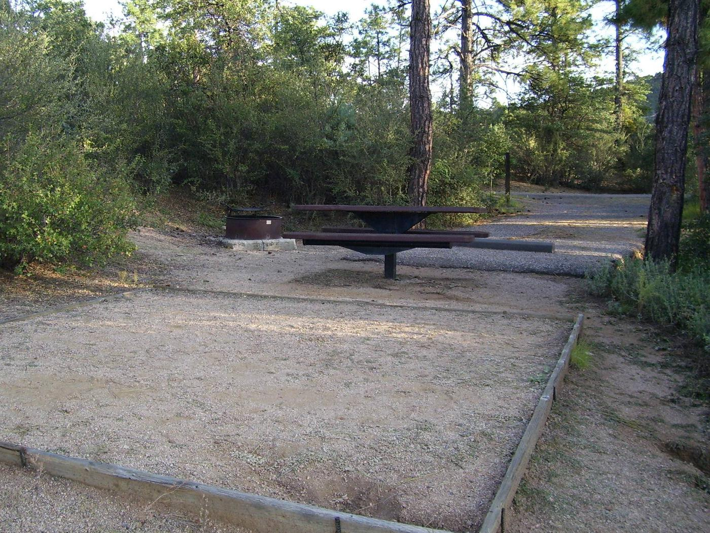 Yavapai Campground Site 8 in heavy shade, sandy tent pad with table and fire pit between sandy driveway and tent pad. Yavapai Campground site #8