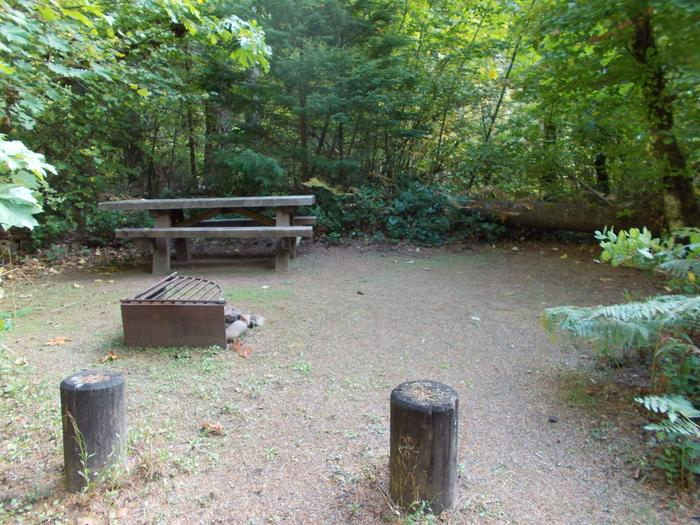 Flat campsite with one picnic table and fire ring.002