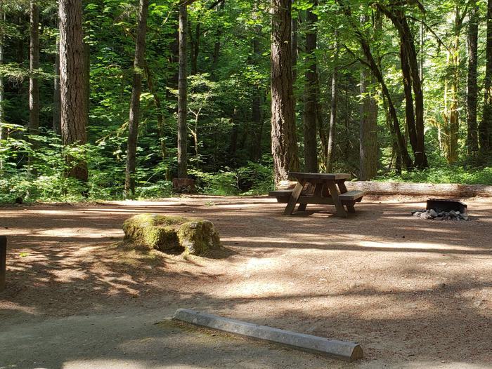 Flat campsite with one picnic table and fire ring.013