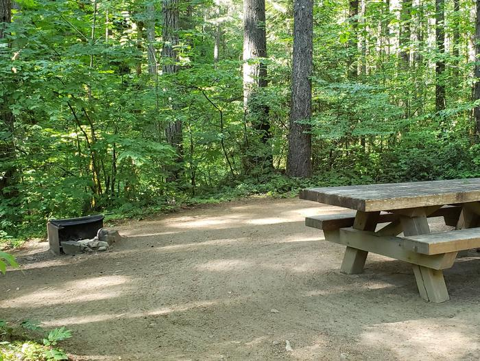Flat campsite with one picnic table and fire ring.014