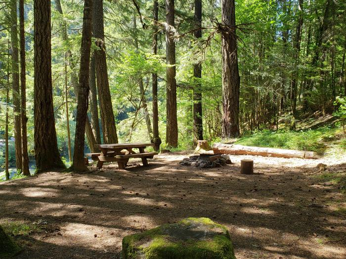 Flat campsite with one picnic table and fire ring.01