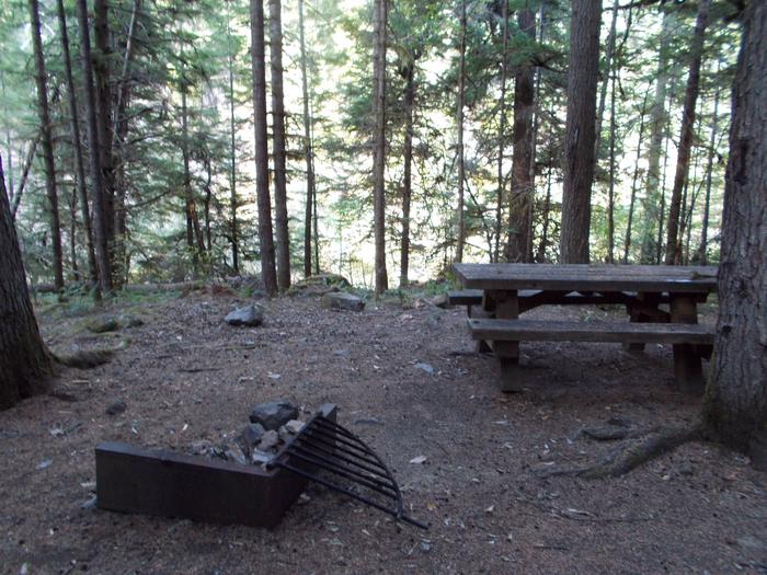 Flat campsite with one picnic table and fire ring.001
