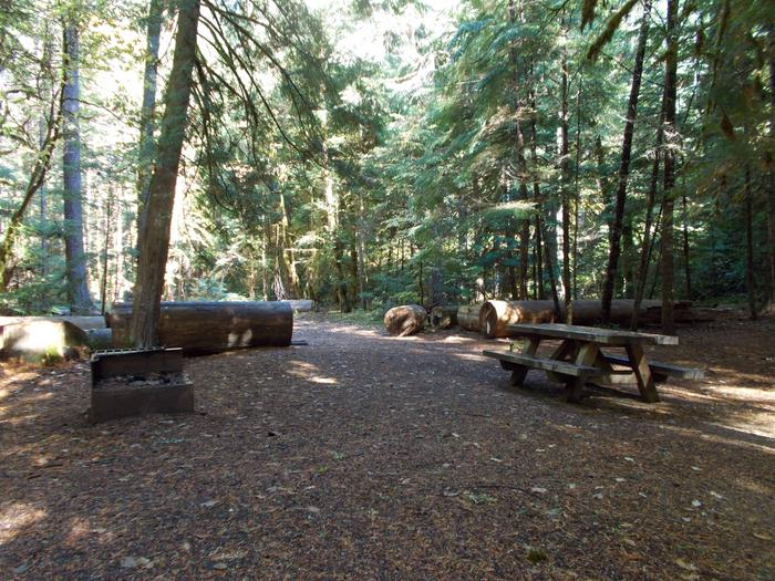 Flat campsite with one picnic table and fire ring.005