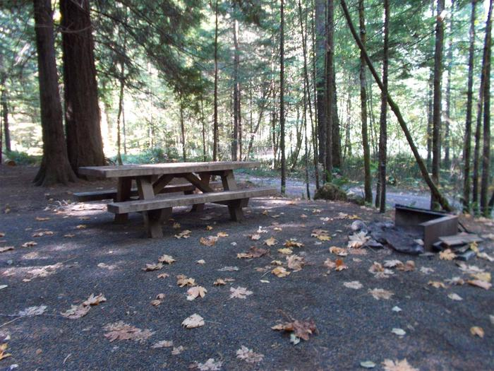 Flat campsite with one picnic table and fire ring.008