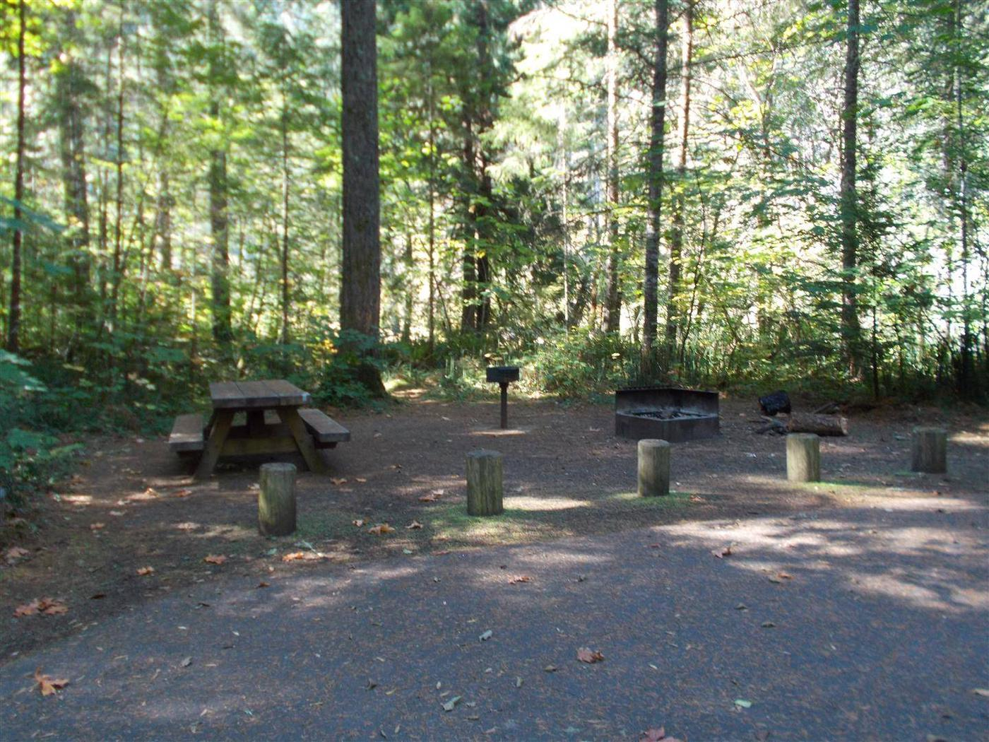 Flat campsite with one picnic table and fire ring.010