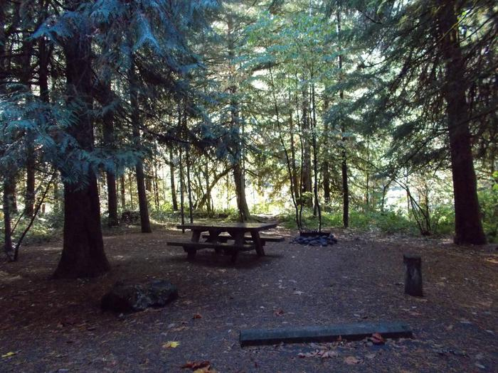 Flat campsite with one picnic table and fire ring.015