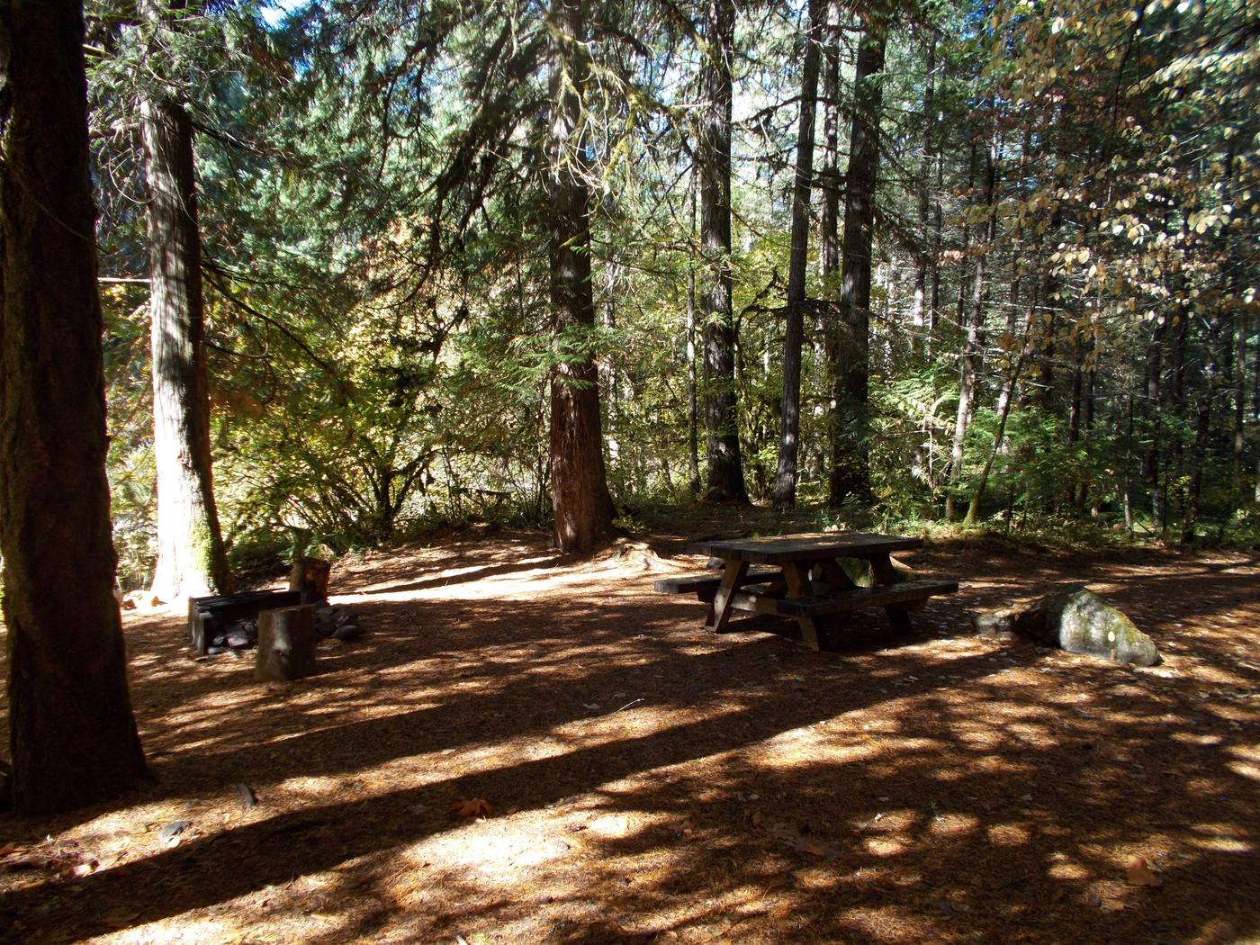 Flat campsite with one picnic table and fire ring.016