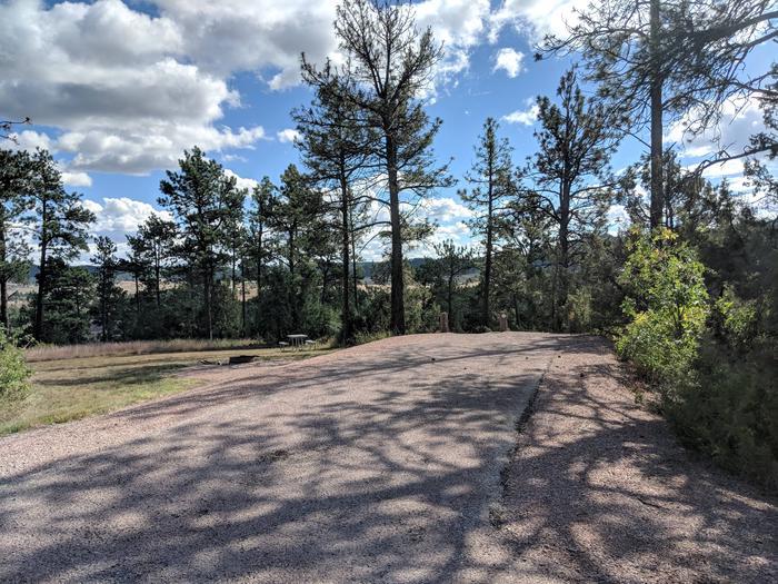 Cottonood Springs CampgroundCottonwood Springs Campground Site 5