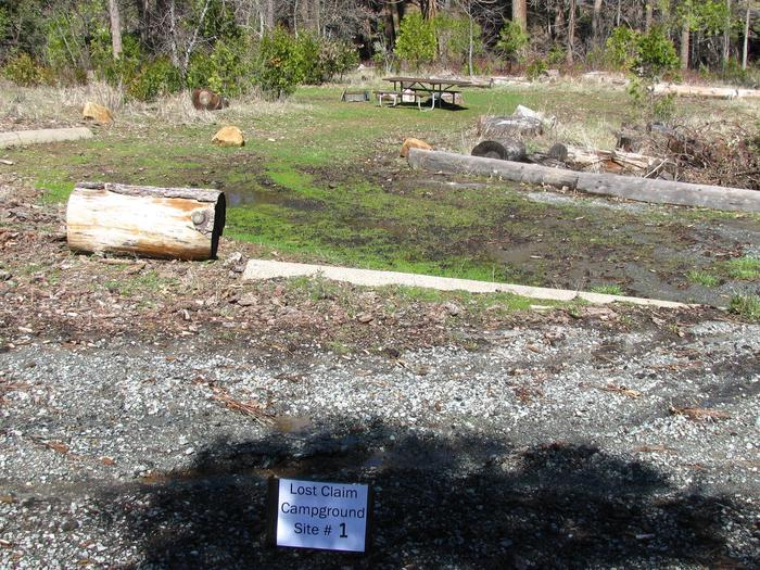 Native surface site with picnic table, fire ring and bear-proof food storage boxLost Claim Campground Site #1
