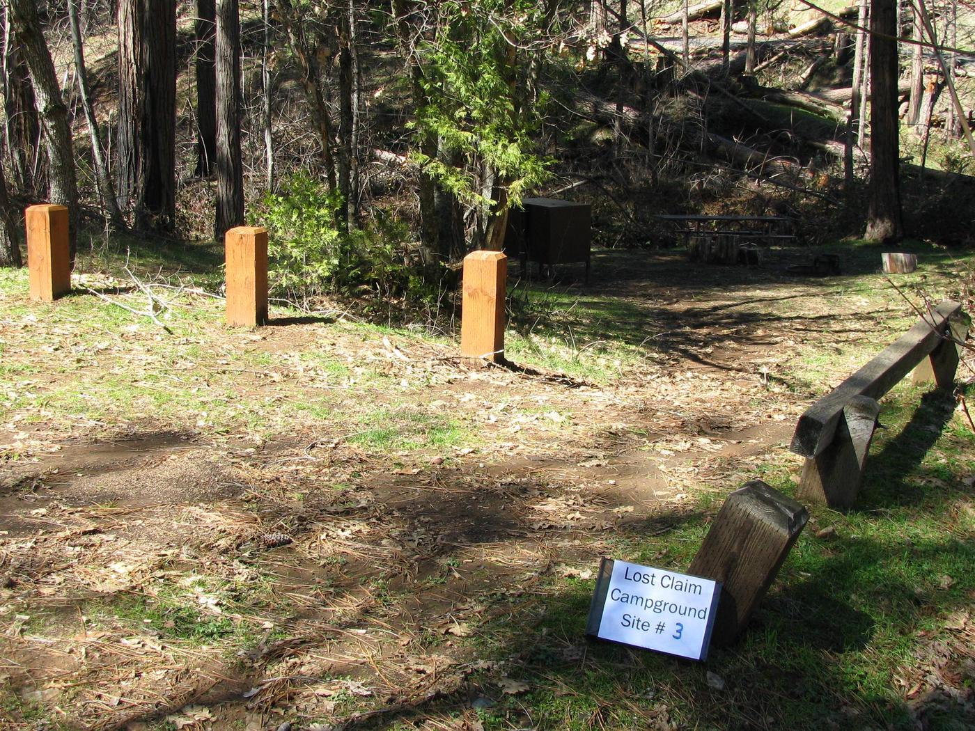 Native surface site with picnic table, fire ring and bear-proof food storage boxLost Claim Campground Site #3