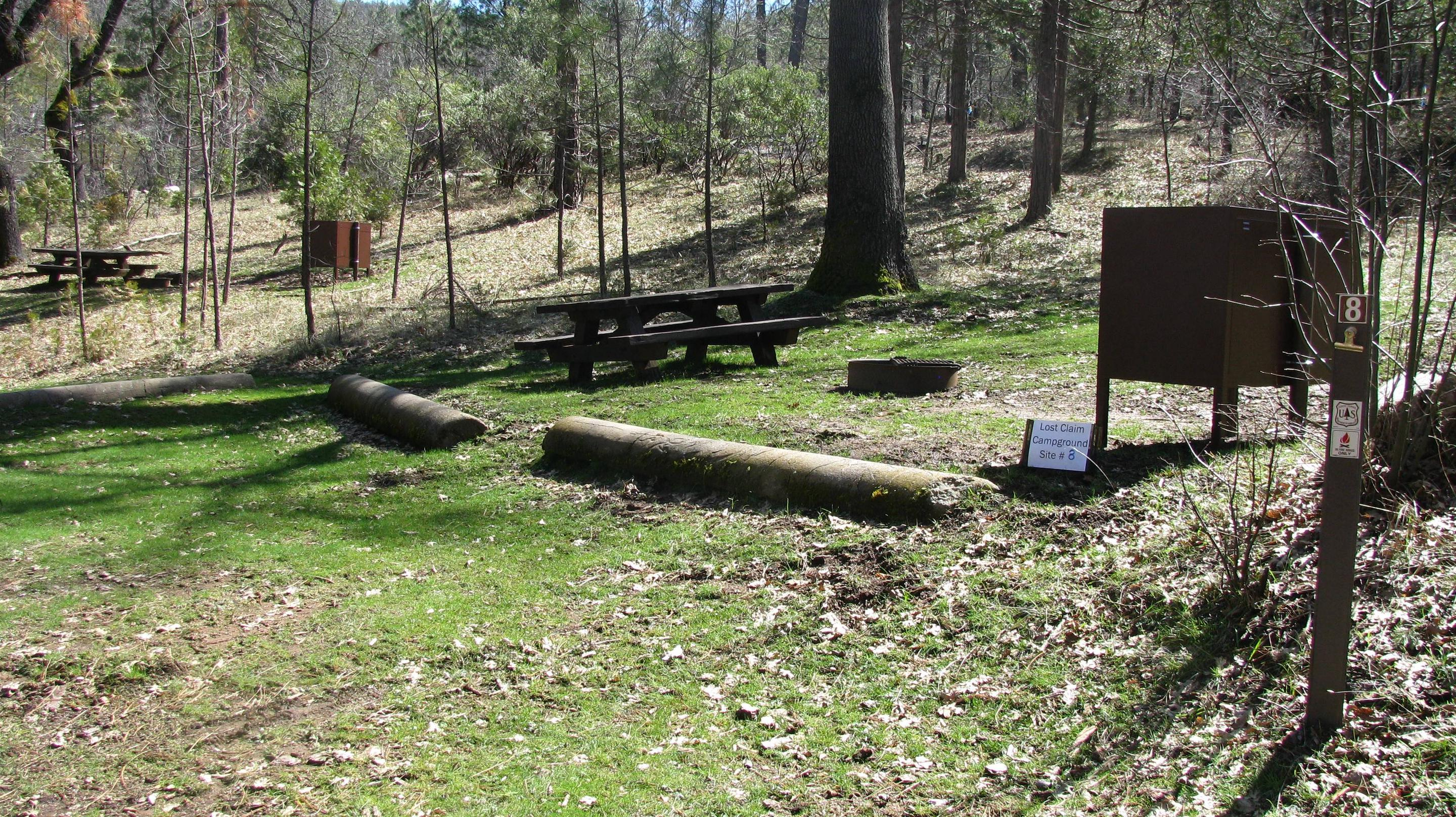 Native surface site with picnic table, fire ring and bear-proof food storage boxLost Claim Campground Site #8