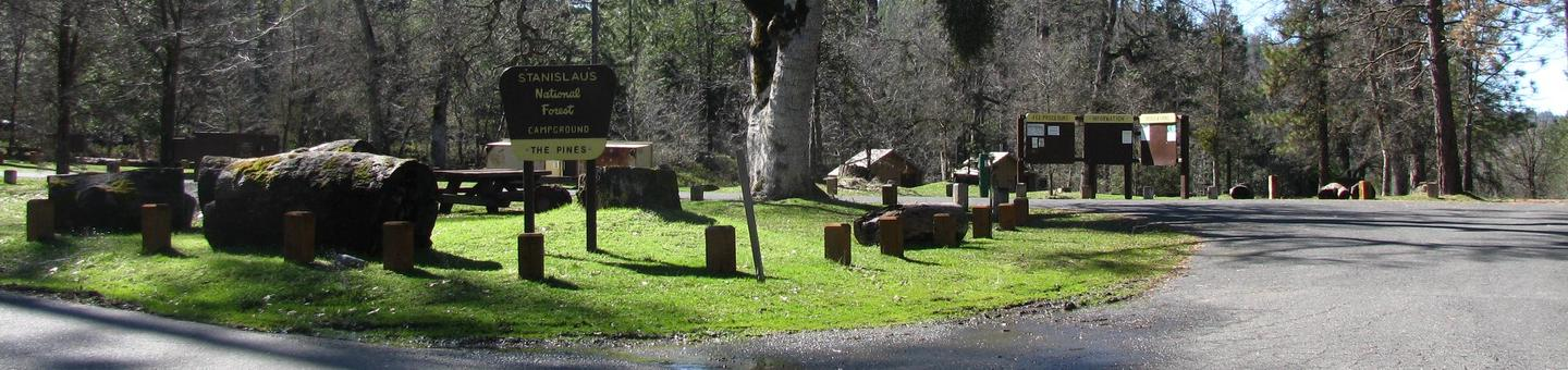 The Pines Campground