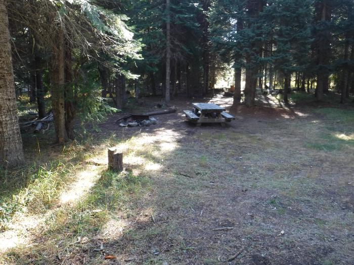 Flat campsite with one picnic table and fire ring.003