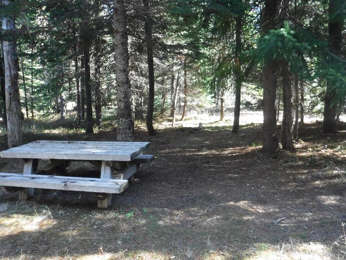 Flat campsite with one picnic table and fire ring.004