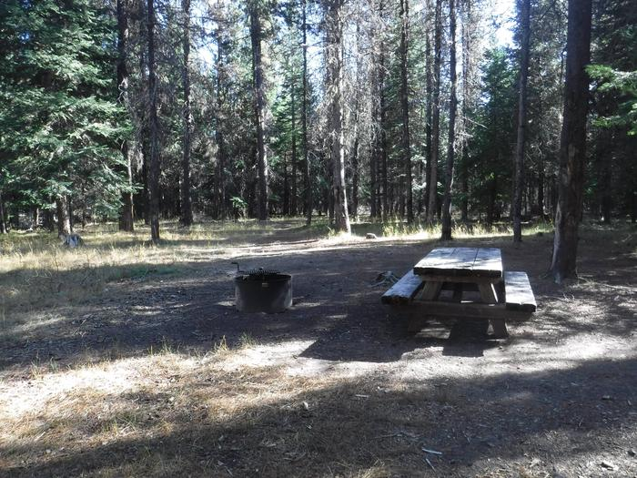 Flat campsite with one picnic table and fire ring.006