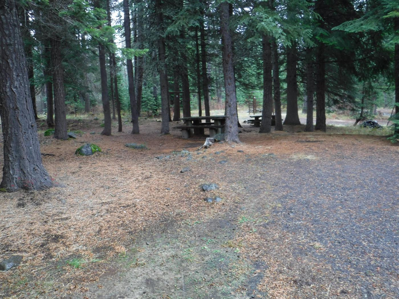 Flat campsite with one picnic table and fire ring.A002