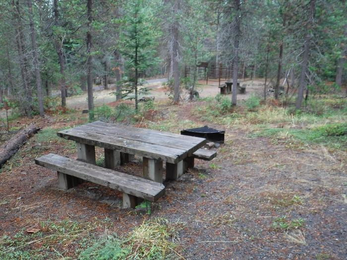 Campsite with one picnic table and fire ring.004