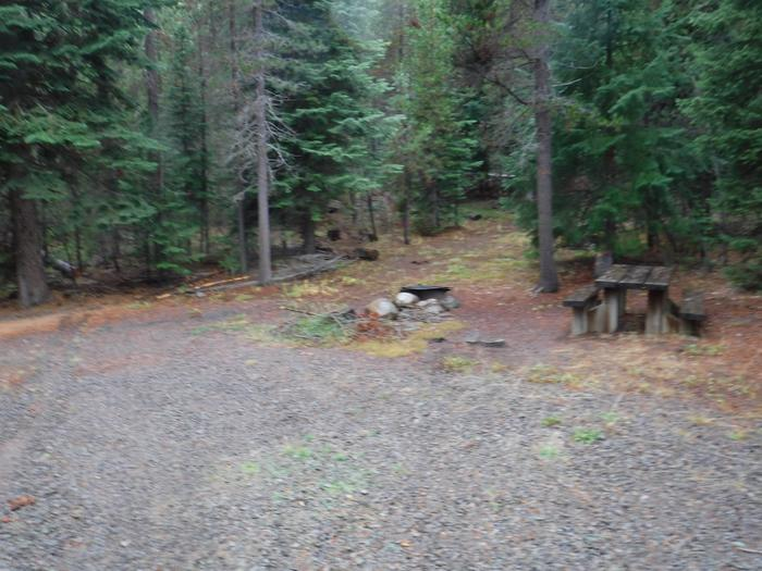 Flat campsite with one picnic table and fire ring.007